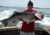 Inshore Fishing Charters Boston